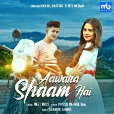 Aawara Shaam Hai - Piyush Mehroliyaa