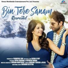 Bin Tere Sanam - Recreated