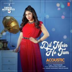 Dil Mein Ho Tum Acoustic - Tulsi Kumar