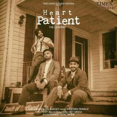 Heart Patient - The Landers