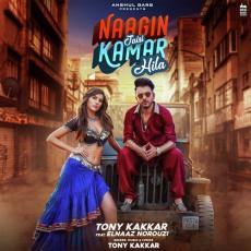 Naagin Jaisi - Tony Kakkar