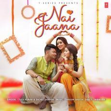 Nai Jaana - Tulsi Kumar