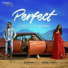 Perfect - Badshah