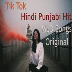 TIK TOK - HINDI PUNJABI HIT MP3 SONGS 2018