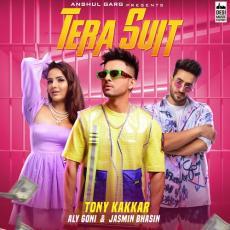 Tera Suit - Tony Kakkar