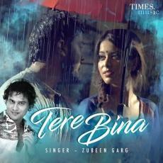 Tere Bina - Zubeen Garg
