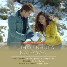 Tujhko Bhula Na Payaa - Amit Mishra